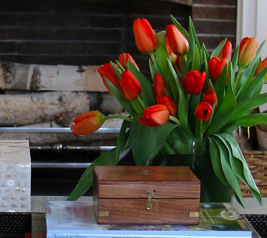 orange-tulips-nl